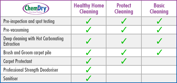 chem-dry-protectant-and-sanitiser-cleaning-packages